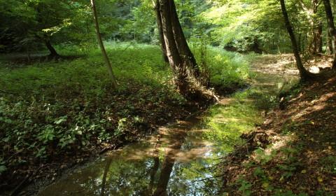 "2014 – ""La Fontana del Guerc: da discarica a Riserva Naturale"""